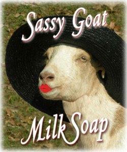 SassyGoatMilkSoap