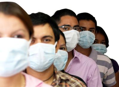 gripa%20porcina%201