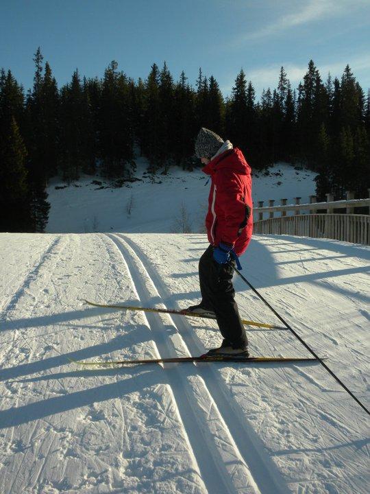 Pe schiuri în Trondheim